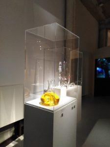 Vitrine musée 2